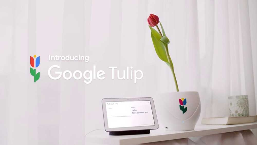 google pranks and tricks