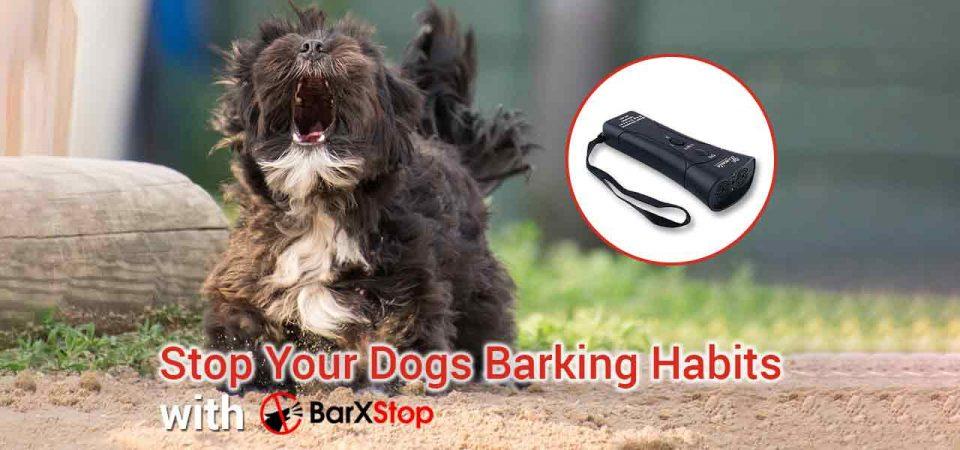 stop dog barking barxstop review