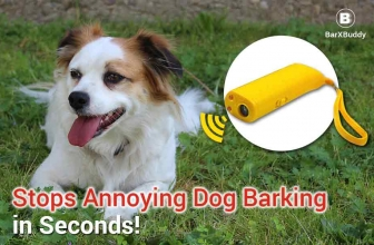 Barx Buddy Review: Why It's The Hottest Product for Dog Owners