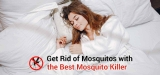 Best Mosquito Killer – Most Effective Method